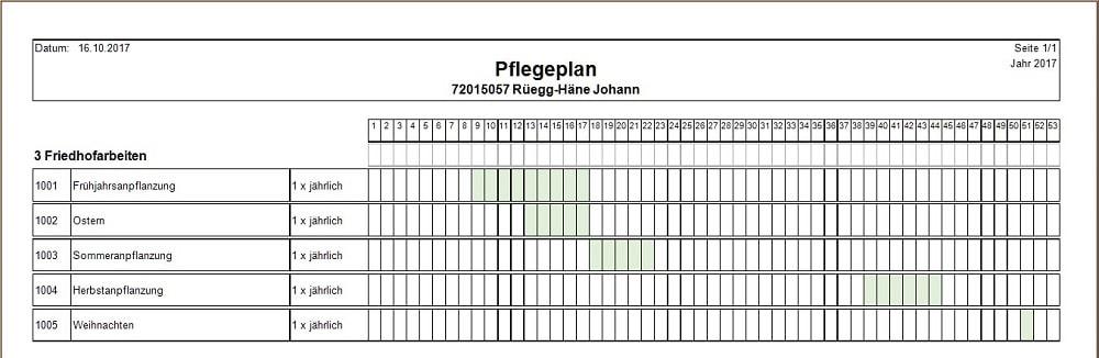 Screenshot Pflegeplan