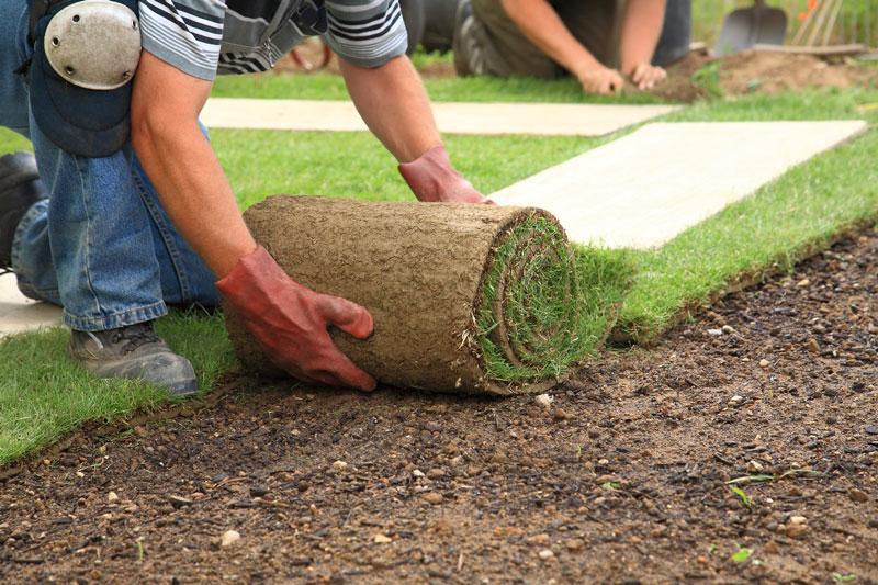 SORBA-Branche-Gartenbau.jpg