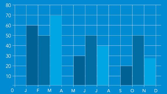 Graphique histogramme de l'année